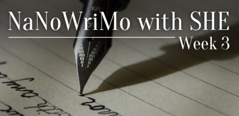 NaNoWriMo: Week 3
